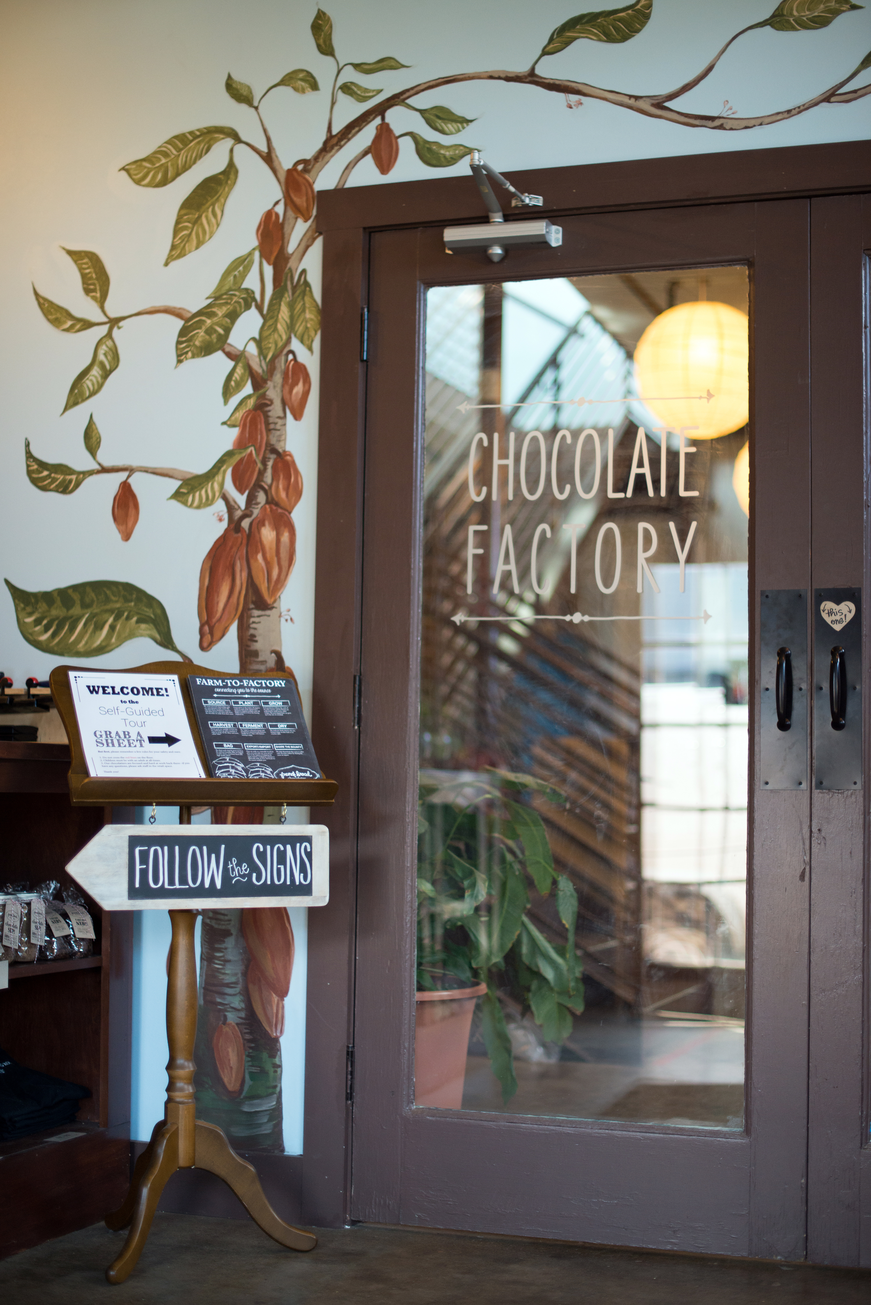 French Broad Chocolate Factory | Now, Forager | Teresa Floyd Photography