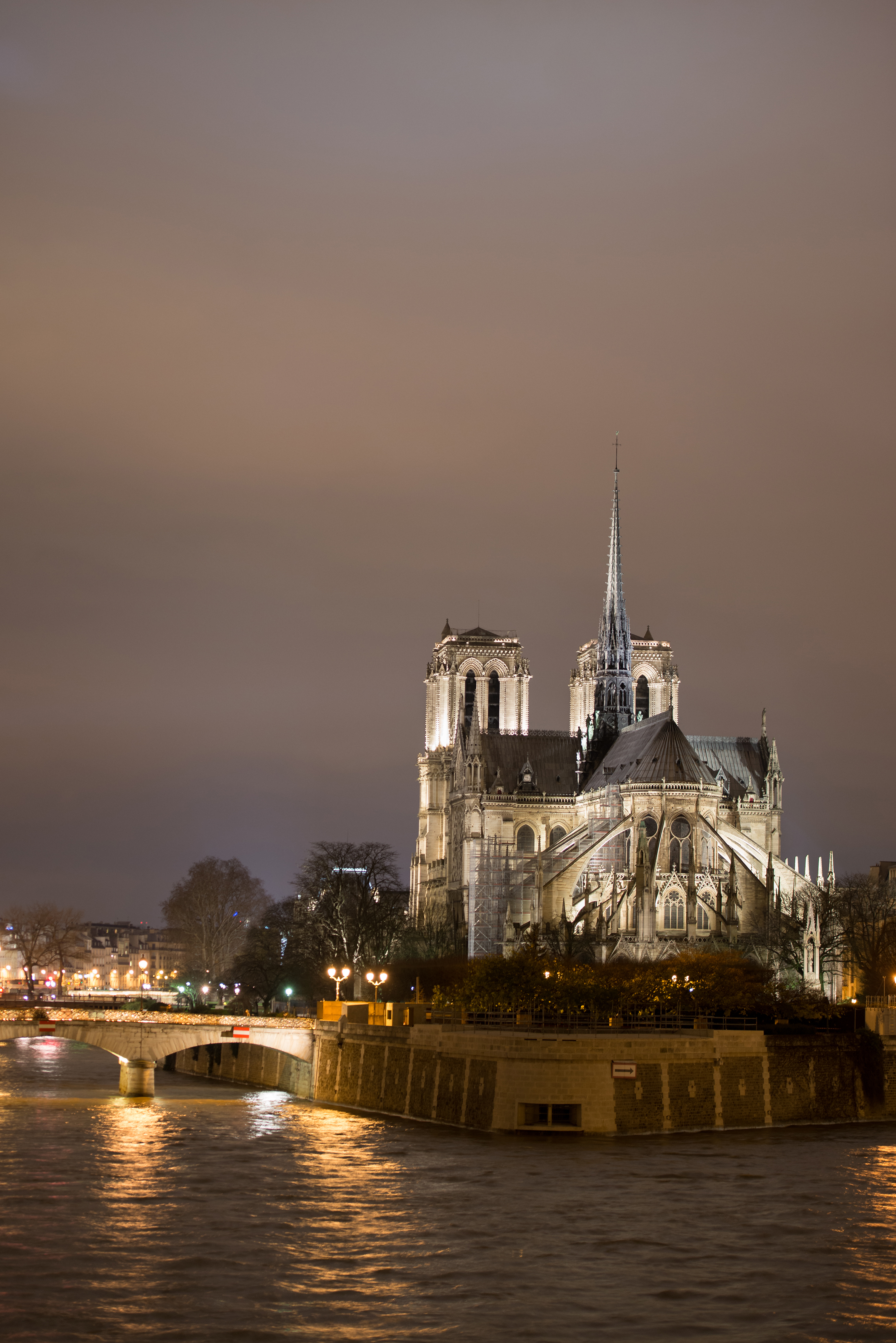 Notre Dame | Now, Forager | Teresa Floyd Photography