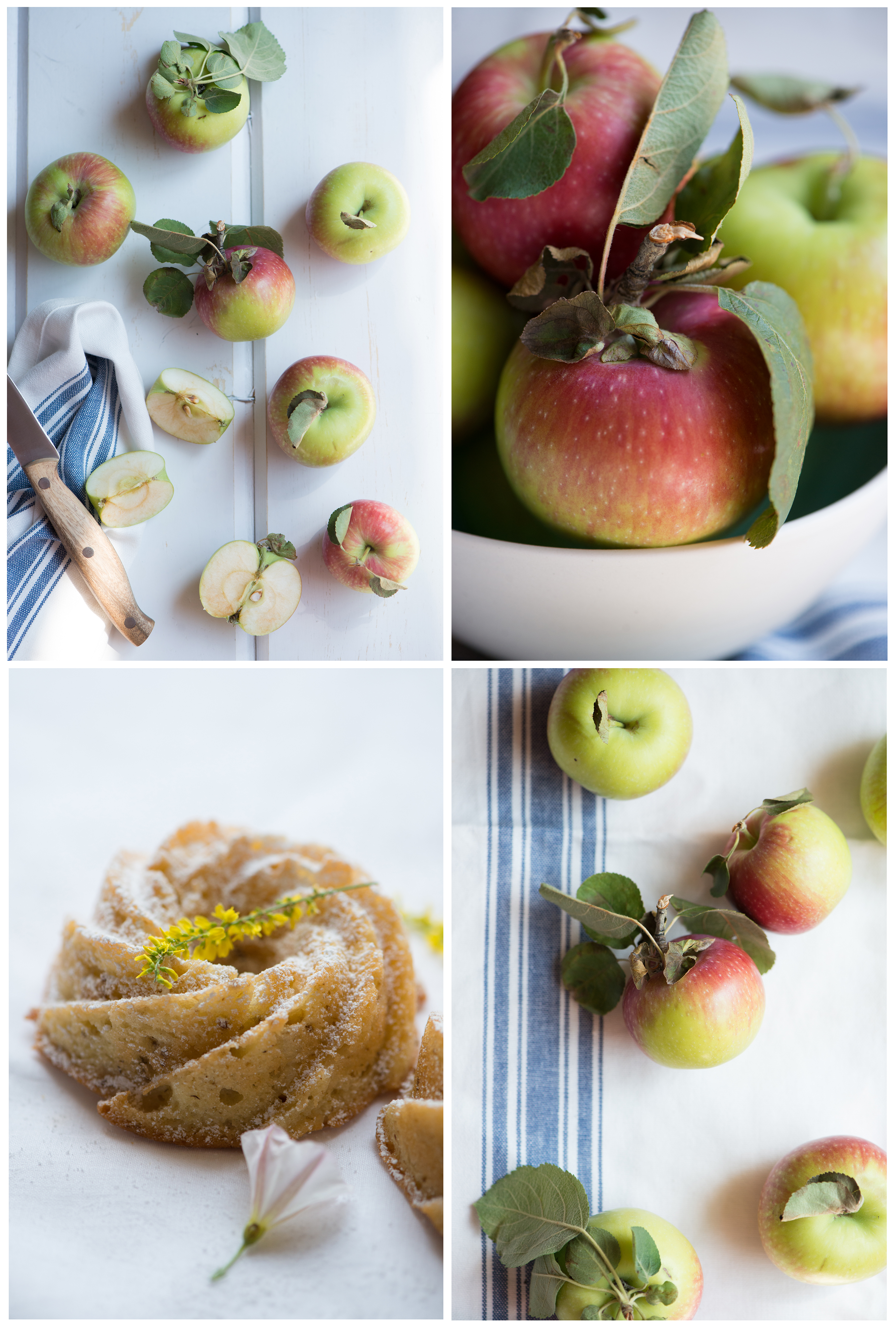 Summertime Apples | Now, Forager | Teresa Floyd Photography