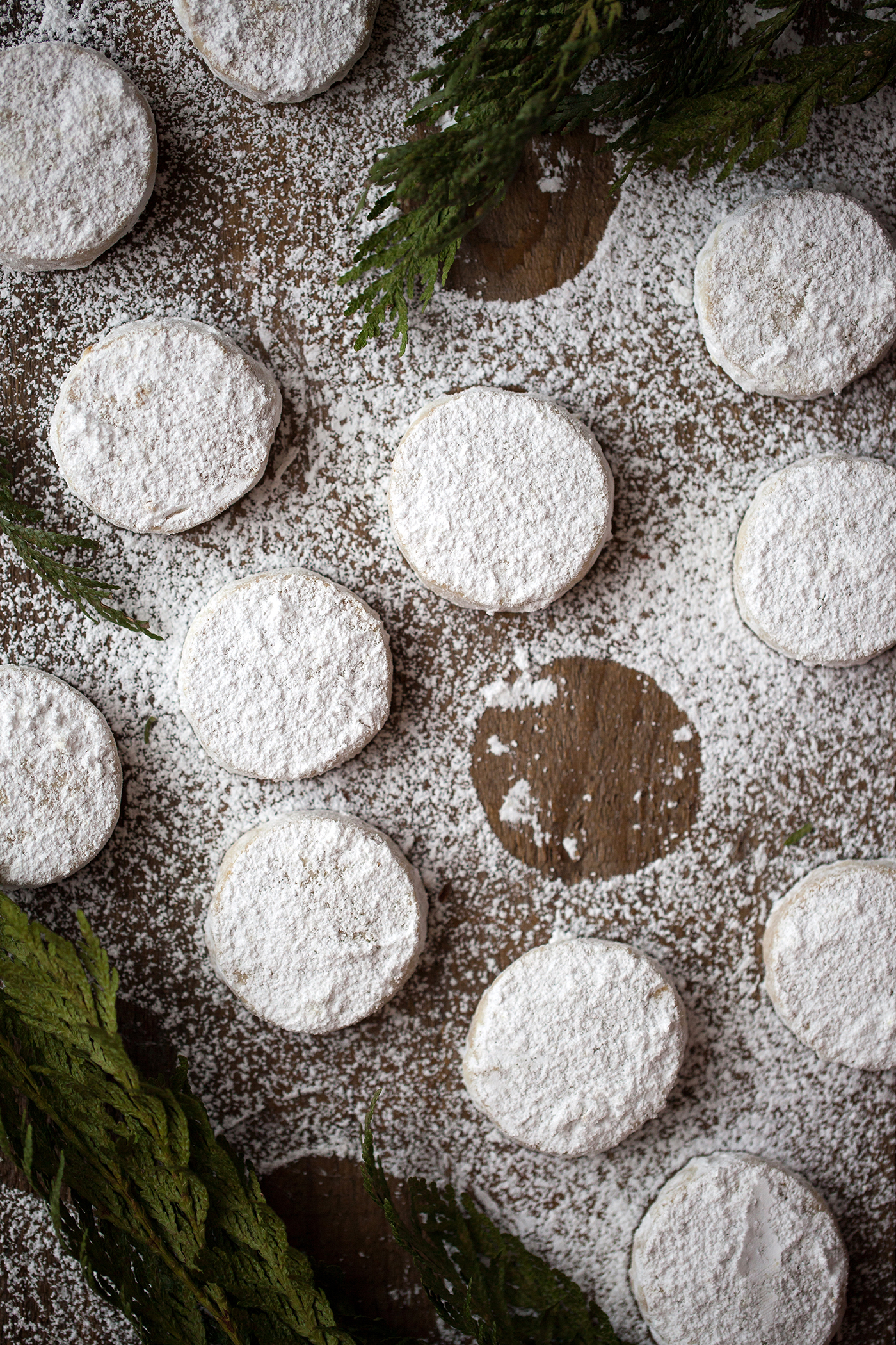 Chestnut Snow Cookies for the Holidays | Now, Forager | Teresa Floyd Photography