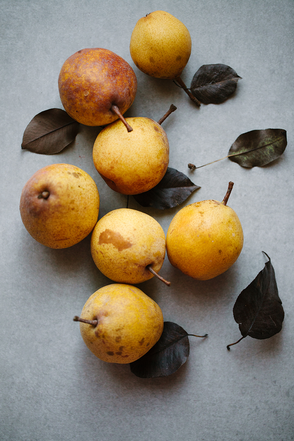 Fall Pears | Now, Forager | Teresa Floyd Photography