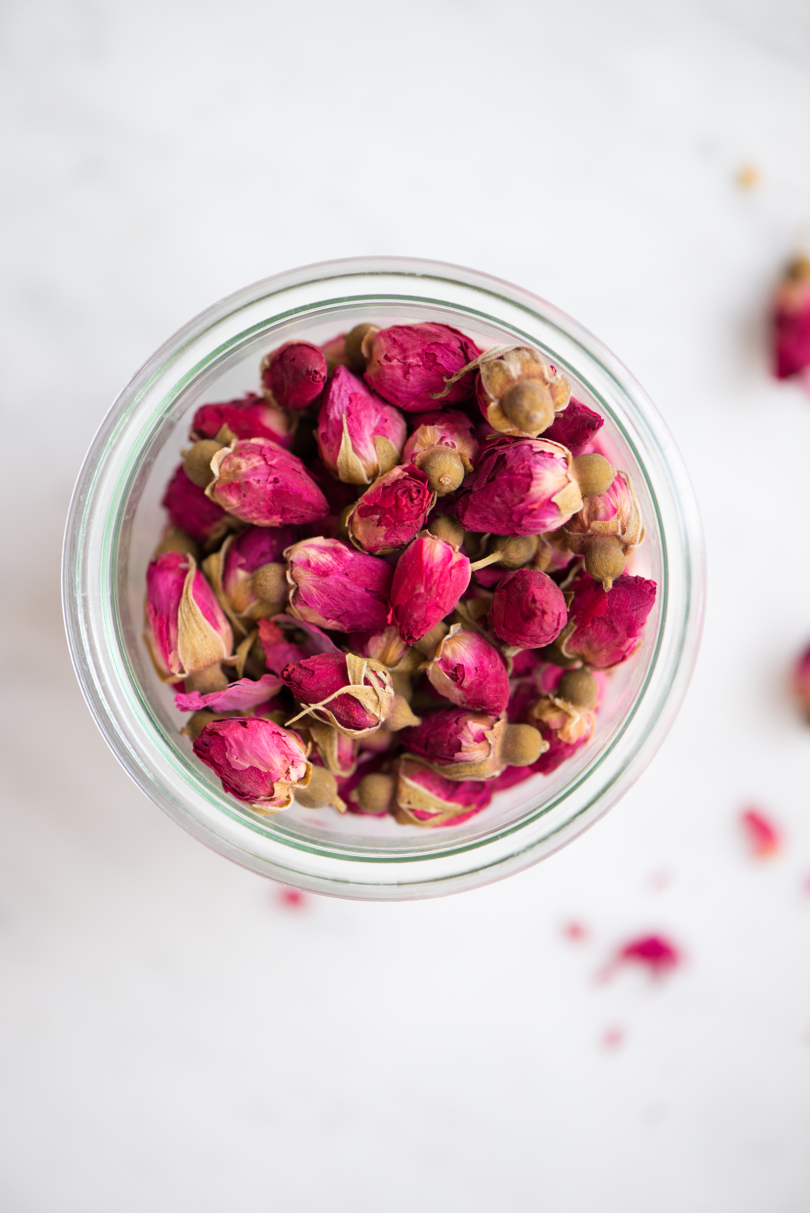 Rose Buds | Now, Forager | Teresa Floyd Photography