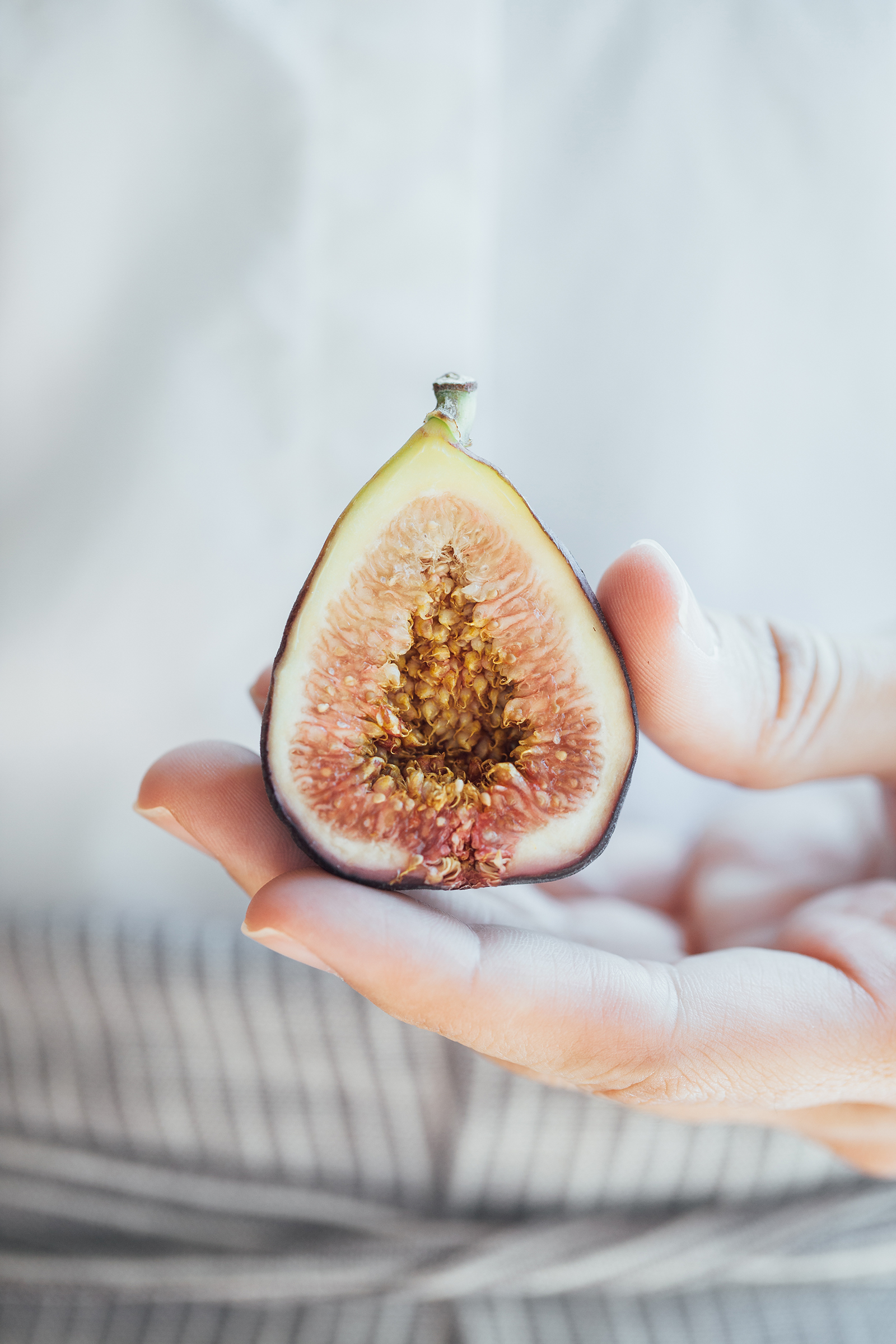Fig | Now, Forager | Teresa Floyd