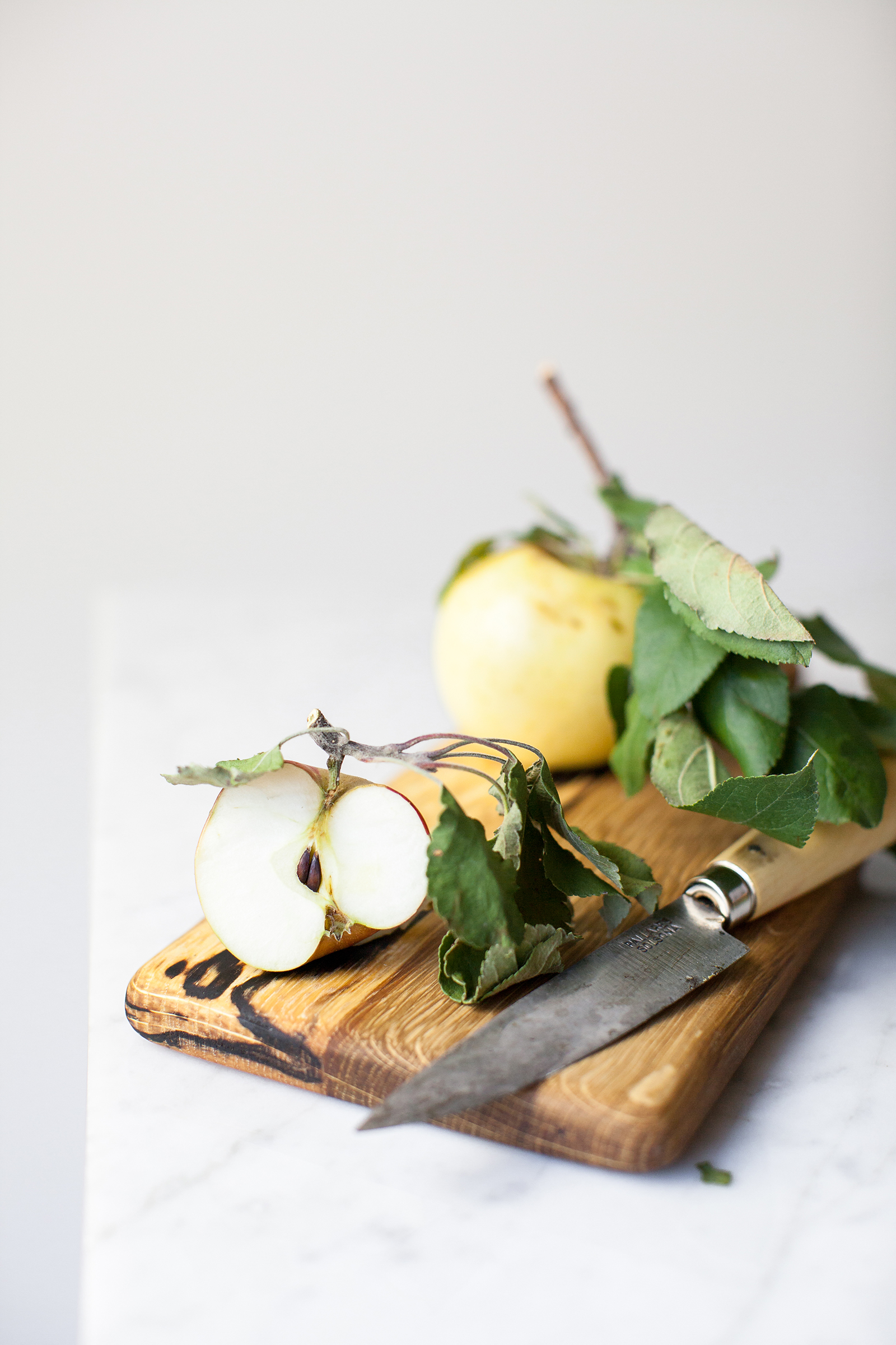 Apple Still Life | Now, Forager | Teresa Floyd