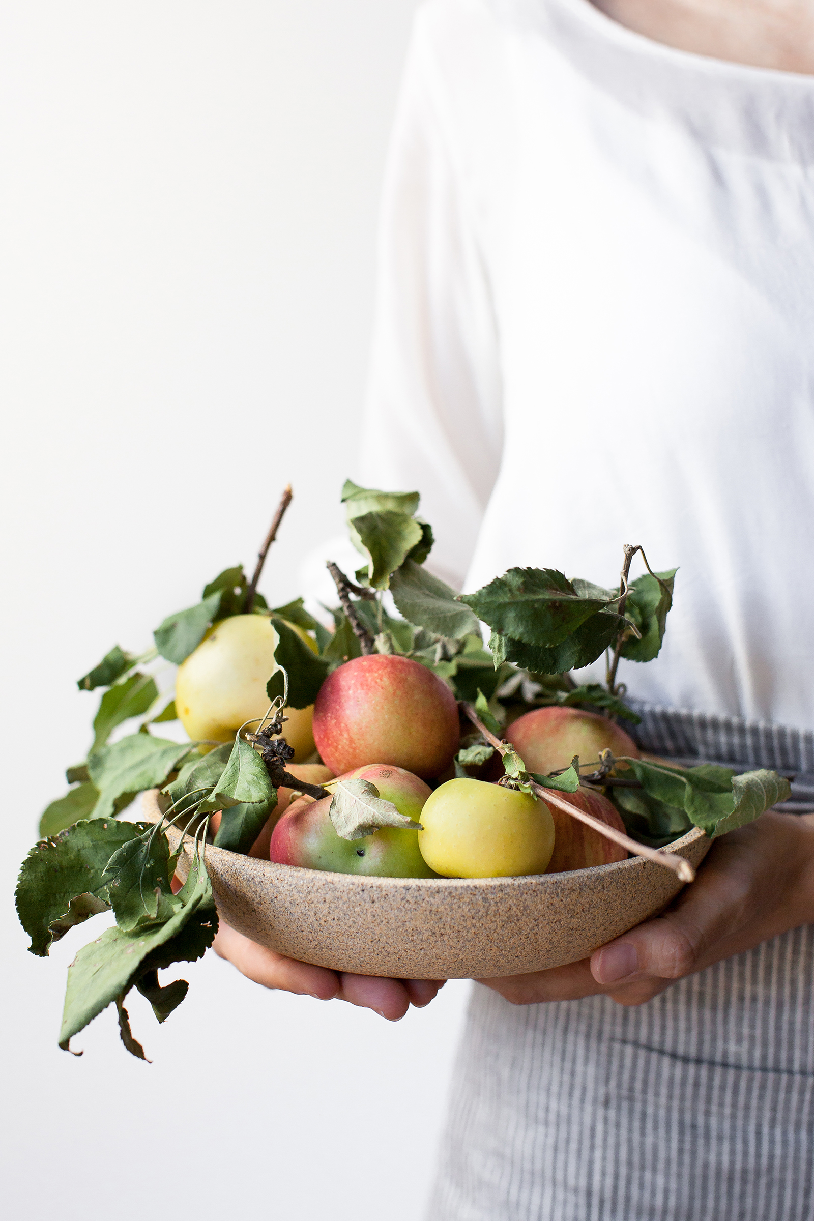 Apples | Now, Forager | Teresa Floyd