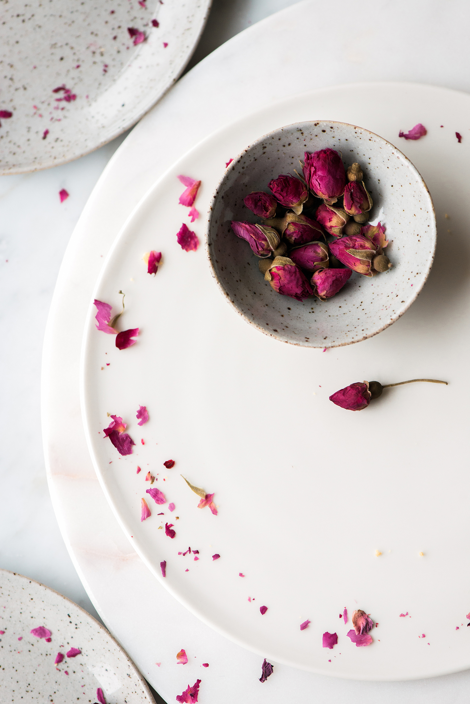 Rose Buds | Now, Forager | Teresa Floyd